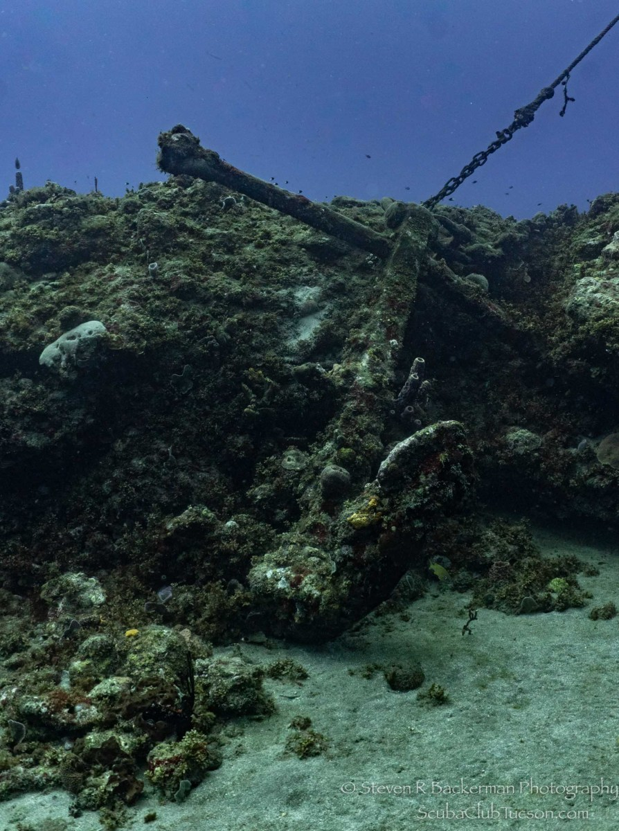 ~200 year old anchor-2959